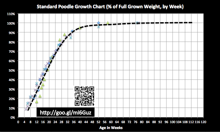 Standard poodle growth chart update poodle forum standard poodle